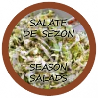 Salate de sezon