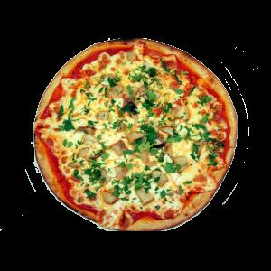 pizza-hribe